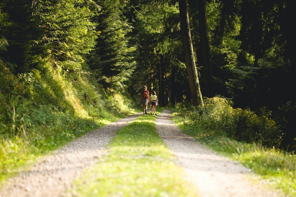 Naturterapi: Kom ud i naturen og styrk psyken